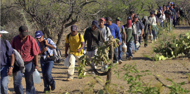 Border Patrol in Texas 'On The Verge of Total Collapse' As Record Number of Illegals Flood the Border